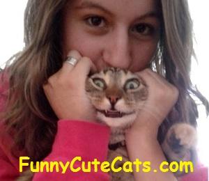 Funny Cute Cats!